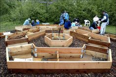 Hexagon shaped raised bed garden. Like the artistic/mathematic arrangement.  Well thought out.  More than just a bunch of rectangles.