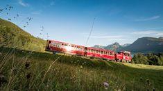 Foto: SchafbergBahn & WolfgangseeSchifffahrt: Die Schafbergbahn Spa Villa, Kaiser Franz, Hallstatt, Salzburg, Golden Gate Bridge, Train, Europe, Vacation Travel, Photo Mural
