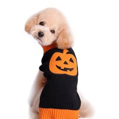 Oasis Plus cat Dog Cat Cotton Knit Jumper Sweater Black Orange Pumpkin Puppy Warm Winter Knitwear Costume *** Be sure to check out this awesome product. (This is an affiliate link and I receive a commission for the sales) #MyPet