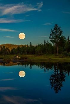 The photograph is an example of balance in nature. The reflection of the trees and moon on the lake make it seem like land and then the upside down. If folded and put together they would make up one exact forest and moon. Beautiful Moon, Beautiful World, Shoot The Moon, Moon Pictures, Night Pictures, Summer Nights, Summer Evening, Amazing Nature, Belle Photo