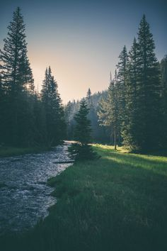 It will be great if I can lay down on the grass, resting my mind while ear listening to the sound of river flowing and splashing