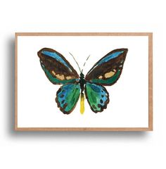 Butterfly print Jade Teal Butterfly art print by TheJoyofColor