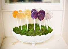 lollipop garden