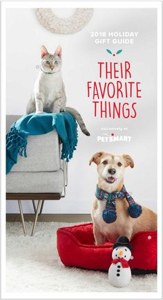 PetSmart Holiday Book 2018 Ads and Deals Browse the PetSmart Holiday Book 2018 ad scan and the complete product by product sales listing. Holiday Gift Guide, Holiday Gifts, Books 2018, Coupons, Teddy Bear, Ads, Animals, Animales, Coupon