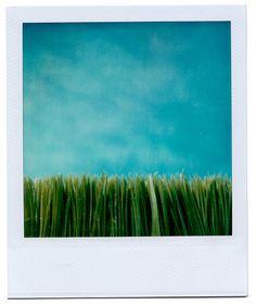 Springtime (2006)