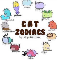 Pusheen as the zodiac signs Zodiac Signs Astrology, Zodiac Memes, Zodiac Star Signs, My Zodiac Sign, Zodiac Horoscope, Chinese Zodiac Signs, Anime Zodiac, Zodiac Art, Zodiac Signs Animals