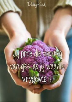 Afrikaans Quotes, Daisy, Van, Words, Inspiration, Biblical Inspiration, Daisies, Bellis Perennis, Vans