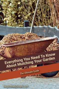 Ultimate Guide To Mulching Your Garden Wood Chip Mulch, Types Of Mulch, Rubber Mulch, Mulches, Organic Mulch, Crushed Stone, Weed Seeds, Landscape Fabric, Compost