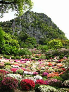 Saga, Japan
