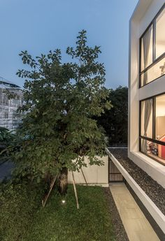 Kradoan House by Thiti Ophatsodsai: Serenity with Nature in Urban lifestyle of Bangkok - CAANdesign Modern Minimalist House, Modern House Design, L Shaped House, Thai House, Interior Garden, Aesthetic Room Decor, Home Design Plans, Architecture Design, House Plans