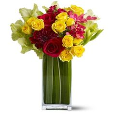 Order Island Blooms from MyFlorist, your local McLean florist. Send Island Blooms for fresh and fast flower delivery throughout McLean, VA area. Order Flowers, Flowers Online, All Flowers, Exotic Flowers, Summer Flowers, Fresh Flowers, Beautiful Flowers, Tropical Flowers, Fresh Flower Delivery