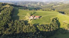 Vineyard, Outdoor, Wine, Outdoors, Vine Yard, Vineyard Vines, Outdoor Games, The Great Outdoors