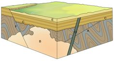 Cross-cutting relations can be used to determine the relative ages of rock strata and other geological structures. Explanations: A – folded rock strata cut by a thrust fault; B – large intrusion (cutting through A); C – erosional angular unconformity (cutting off A & B) on which rock strata were deposited; D – volcanic dyke (cutting through A, B & C); E – even younger rock strata (overlying C & D); F – normal fault (cutting through A, B, C & E).