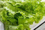 Μαρούλι: 5 σημαντικά οφέλη για τον οργανισμό Lettuce, Kai, Vegetables, Food, Jars, Essen, Vegetable Recipes, Meals, Yemek