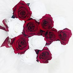 """Gefällt 237 Mal, 1 Kommentare - Amour Des Roses® Rosenbox (@amourdesroses.de) auf Instagram: """"Red and White ❤️ #amourdesroses #rosebox #flowerbox #infinityroses #redandwhite #classy #mix…"""" Flower Boxes, Flowers, Red And White, Infinity Heart, Classy, Instagram, Plants, Roses, Natural"""