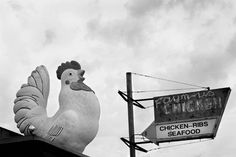 I would gladly put this giant clucker on my roof. Or in my garden. And I'd also consider making his beak a mailbox. However, this is not my chicken sign.