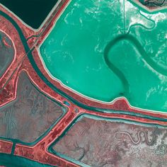 San Francisco Salt Ponds