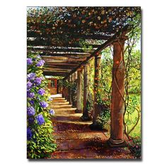 David Lloyd Glover 'Pergola Walkway' Gallery-Wrapped Art