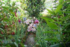 Vitae Fratrum Ordinis Praedicatorum: O jardim íntimo