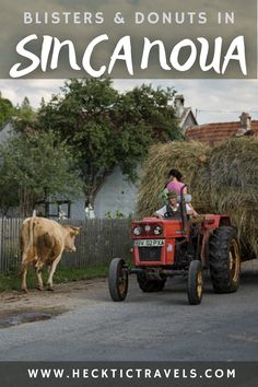For three days we visited the small Romanian town of Sinca Noua - working in the fields and the kitchen with the wonderful Ittu family. Old Grandpa, Visit Romania, Three Days, Fields, Kitchen, Cooking, Kitchens, Cuisine, Cucina