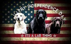 Happy 4th! juli 4th, happi 4th