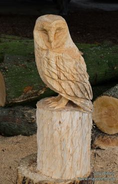 Working on another sleeping barn owl. Working on another sleeping barn owl. Chainsaw Wood Carving, Wood Carving Faces, Wood Carving Designs, Tree Carving, Wood Carving Patterns, Wood Carving Art, Wood Art, Wood Carvings, Art Sculpture En Bois