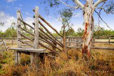 Classic Australian Country Photography: Dan Proud Photography Australia Living, Western Australia, The Wonderful Country, Australian Farm, Fotografia Macro, Land Of Oz, Farm Life, Country Life, Beautiful Landscapes
