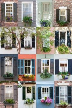 Charleston window boxes and shutters Gardens of South Carolina