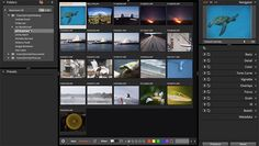 Alien Skin Software Unveils Exposure X for Organizing and Editing Photos