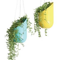 Hanging Planters ... could be a DIY project using painted 2-liter bottles.