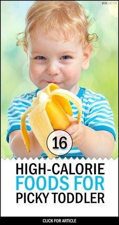 16 Great High Calorie Foods For Toddlers Is your toddler a fussy eater? Are you losing sleep over her slow weight gain? If you answered yes, then check out 16 great high calorie foods for toddlers. Picky Toddler Meals, Toddler Lunches, Kids Meals, Toddler Dinners, Toddler Wont Eat, Kid Lunches, Lunch Snacks, School Lunches, My Bebe
