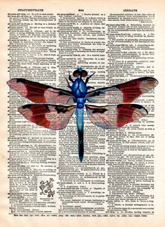 Dragonfly art print, Illustration of a dragonfly from a mid science journal. This illustration makes a very beautiful print. These unique and original artwork are printed on authentic vintage e Book Page Art, Book Art, Newspaper Art, Newspaper Painting, Dragonfly Art, Dictionary Art, Belle Photo, Artwork Prints, Gouache