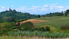 Tra le colline del basso #Monferrato, con il nostro mezzo preferito, le gambe! http://blog.viaggiverdi.it/2014/05/camminando-colline-basso-monferrato/ #Piemonte #camminare #slow #viaggiare @Julie Forrest Myers.piemonte foto di Borghy via flickr