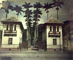 Marc Ferrez | Acervo Instituto Moreira Jardim Botânico, c. 1914