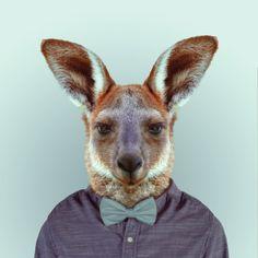 yago partal - zoo portraits
