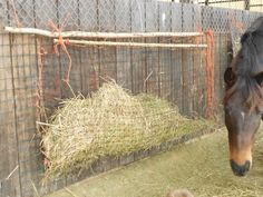 "DIY Slow Feeder Hay ""Wall"" -Keeps horses or goats from eating their hay too…"