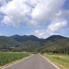 On the road Monte Pisano