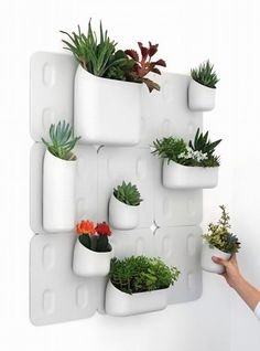 The Urbio Wall Planter is a set of modern looking planters that conserves your small urban apartment space and lets you grow plants on your walls. The wall planters were meant to be modular, so you ca. Verticle Garden, Vertical Garden Design, Herb Garden, Indoor Garden, Balcony Gardening, Vertical Planter, Urban Gardening, Wall Hanging Plant Pots, Hanging Flower Pots