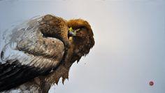 Golden Eagle, 80x150 cm by Karl Mårtens