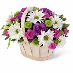 Blooming Bounty Bouquet-This pretty basket is sure to cheer up anyone's day. This white-wash handled basket is filled with green button pompons, white daisy pompons, hot pink mini carnations and purple carnations. A lavender ribbon bow completes your Easter Flowers, Mothers Day Flowers, Green Flowers, Summer Flowers, Beautiful Flowers, Beautiful Gifts, Colorful Flowers, Purple Carnations, Mini Carnations