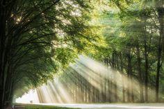 Rays on the Road - @larsvandegoor.com