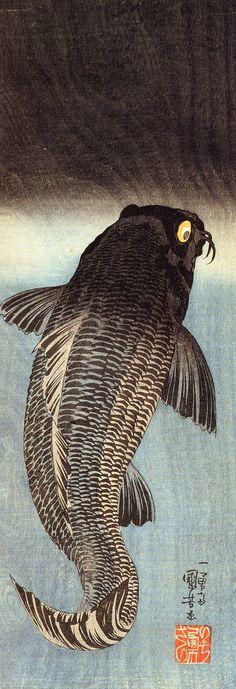 """歌川国芳 Kuniyoshi Utagawa『黒鯉』""""Black carp"""""""