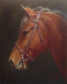 """Mi piace"": 17, commenti: 4 - Carol Brightman Johnson (@cbjbrighty) su Instagram: ""#Morgan #horse #portrait #art #oilpainting #horsegram #cob #equineart"""