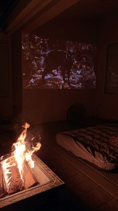 Outside Projector & Fire Pit. We set up our projector outside, next to our fire pit to enjoy the holiday-spooky season!