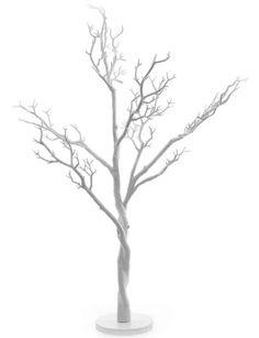 Gorgeous wish tree