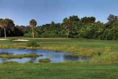 Rolling Green Golf Club~The course is known throughout Sarasota for its collection of challenging holes. Rolling Green offers four sets of tees. Visit Florida, Sarasota Florida, Florida Vacation, Florida Golf Courses, Florida Activities, Stuff To Do, Things To Do, Siesta Key, Golf Clubs