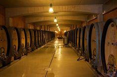Österreich - Steiermark  Weingut Tement - Cellar