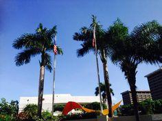 Centro Bellas Artes 8:32  a.m   en este lugar pude observar que si se siguió el protocolo de colocar la bandera  de Puerto Rico a la izquierda de la bandera de Estados Unidos  , pero de igual forma me percate que esta institución no se puede izar las banderas un domingo. Por ultimo pude observar  que el color de la bandera de Puerto Rico  no es azul claro.