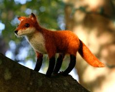 Needle Felted Wool Fox by builtonbranches on Etsy plus my fox mug!  http://www.etsy.com/treasury/MTA0MzY5NzZ8MTg1MjU4Njk0NQ/because-im-sly-thats-why