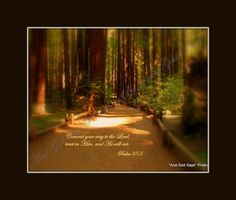 Ecclesiastes 7:8 Inspirational Scripture Pictures at And God Says Productions  Come like us on facebook and become a fan of Inspirational Scripture Photos by Jeanne Geidel-Neal!  Thanks!    https://www.facebook.com/pages/And-GOD-SAYS-Inspirational-Scripture-Pictures/186112668071418?ref=hl